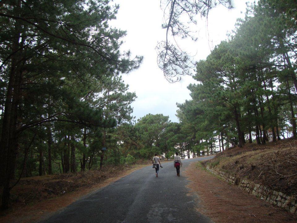 Đỉnh núi LangBiang cảnh đẹp khó quên - hinh 3