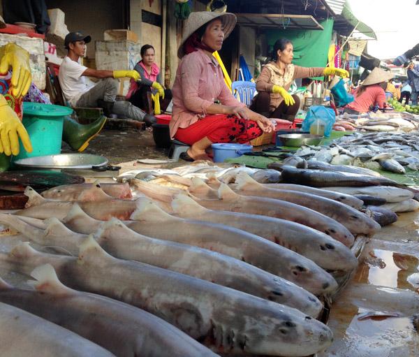 Chợ Dương Đông - Phú Quốc - hinh 2