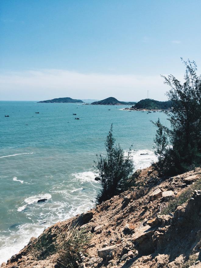 Du lịch Quy Nhơn: Điểm đến hot nhất mùa hè năm này! - hinh 8