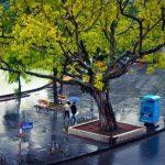 Phương tiện nào di chuyển Thích Hợp khi đi du lịch Hà Nội?