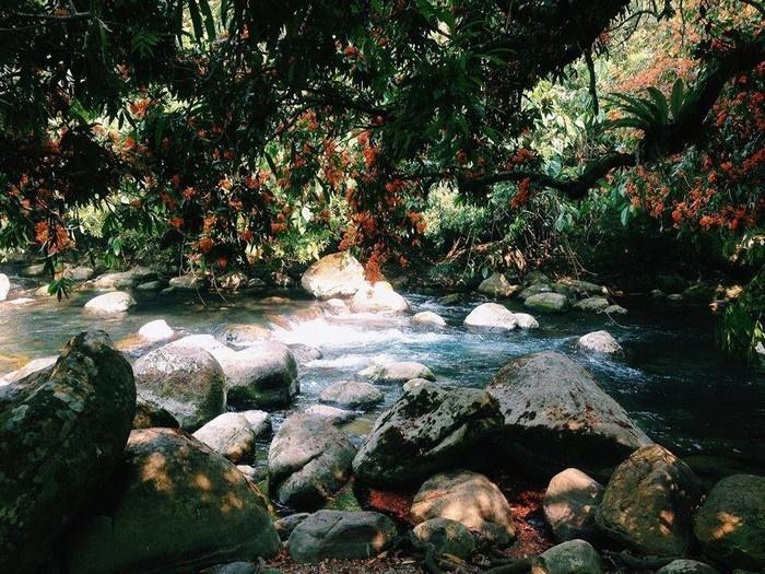 Suối Nước Moọc - Thiên đường đẹp như tranh vẽ ở Quảng Bình - hinh 3