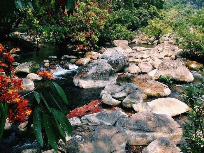 Suối Nước Moọc - Thiên đường đẹp như tranh vẽ ở Quảng Bình - hinh 6