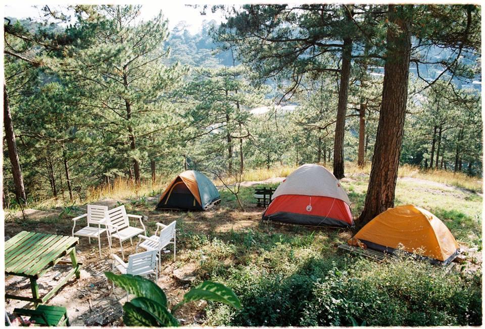 4 homestay ở Đà Lạt xanh mướt, yên tĩnh là nơi lý tưởng cho 'sống ảo' hinh anh 2