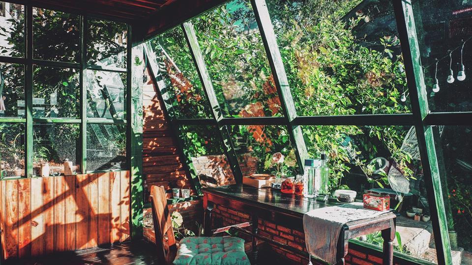 4 homestay ở Đà Lạt xanh mướt, yên tĩnh là nơi lý tưởng cho 'sống ảo' hinh anh 3