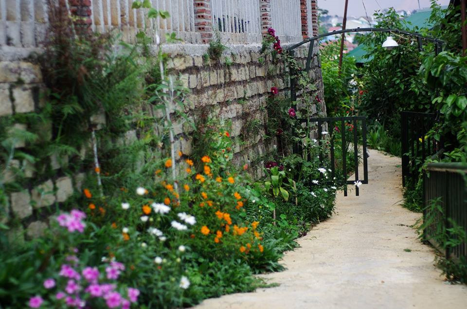 4 homestay ở Đà Lạt xanh mướt, yên tĩnh là nơi lý tưởng cho 'sống ảo' hinh anh 6