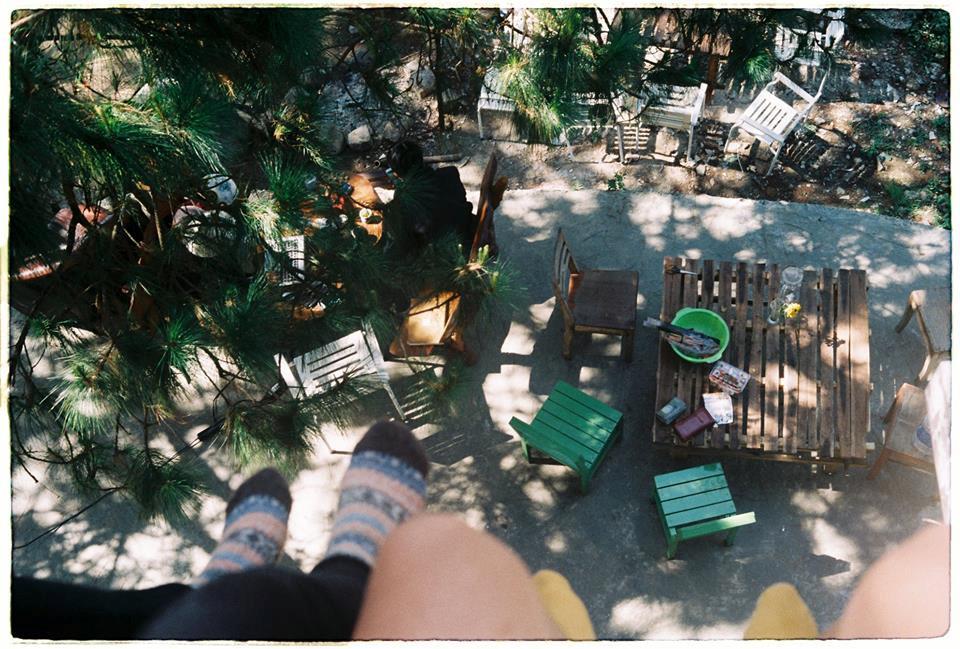 4 homestay ở Đà Lạt xanh mướt, yên tĩnh là nơi lý tưởng cho 'sống ảo' hinh anh 7