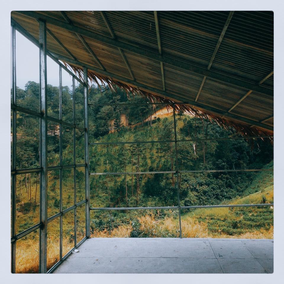 4 homestay ở Đà Lạt xanh mướt, yên tĩnh là nơi lý tưởng cho 'sống ảo' hinh anh 10