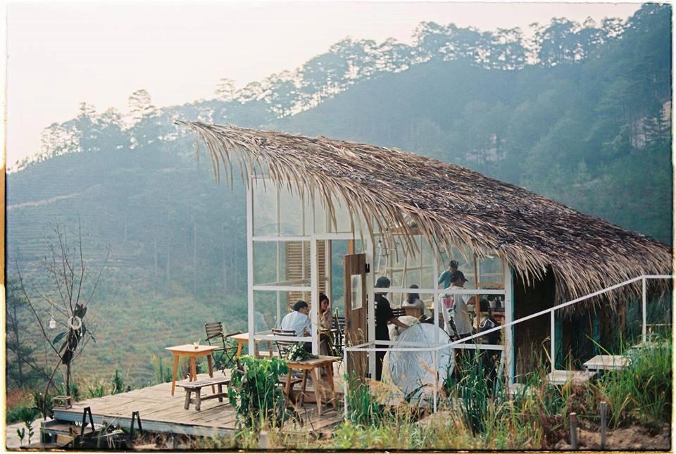 4 homestay ở Đà Lạt xanh mướt, yên tĩnh là nơi lý tưởng cho 'sống ảo' hinh anh 11
