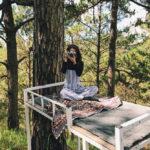 4 homestay ở Đà Lạt xanh mướt, yên tĩnh là nơi lý tưởng cho 'sống ảo'