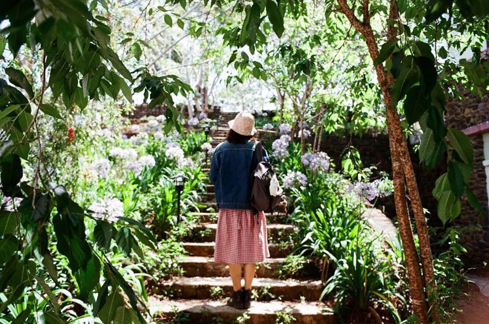 4 homestay ở Đà Lạt xanh mướt, yên tĩnh là nơi lý tưởng cho 'sống ảo' hinh anh 8