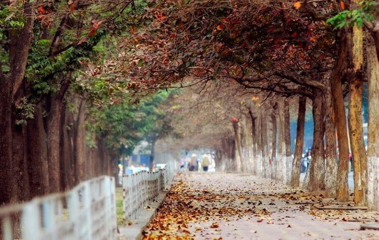 Những địa điểm chụp ảnh đẹp ở Hà Nội - hinh 2